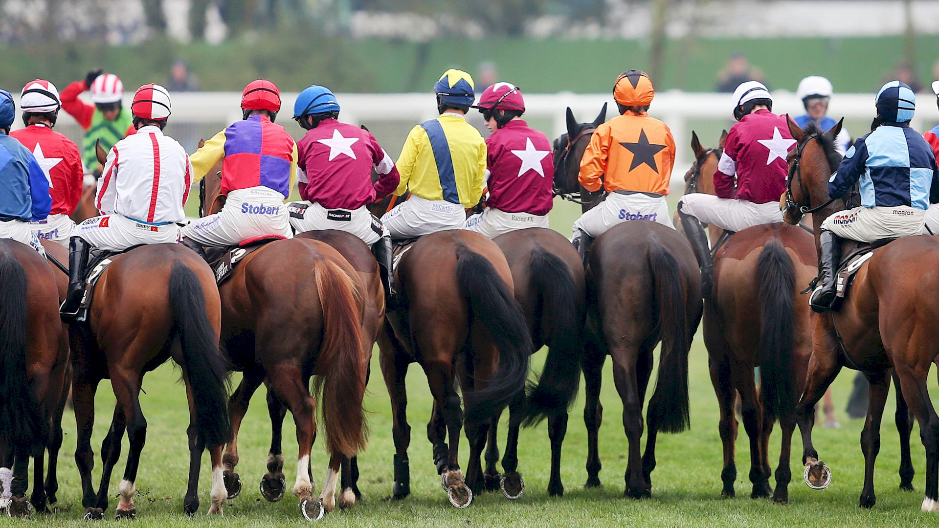 Race and Stay Group Packages and Racing Breaks for all Irish Race Meetings