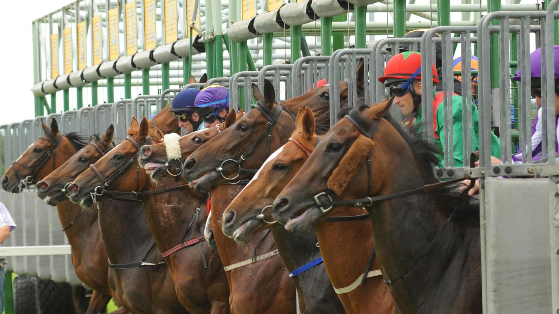 Race and Stay Horse Racing Packages and Racing Breaks for Cork Races Ireland