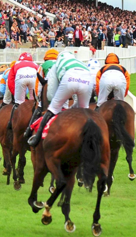 Galway Summer Festival 2021 Packages from Race & Stay