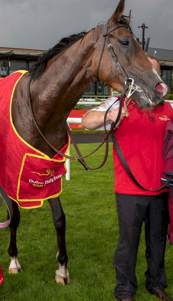 Irish Derby 2021 Packages from Race & Stay