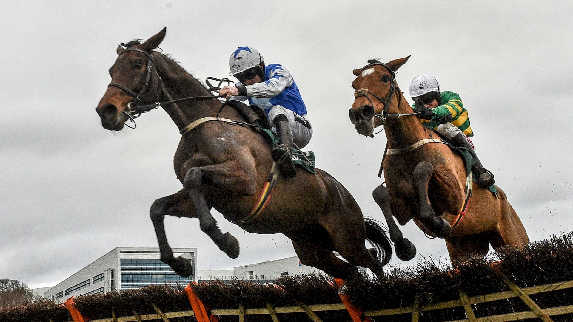 Dublin Racing Festival Race and Stay Horse Racing Packages and Racing Breaks in Ireland