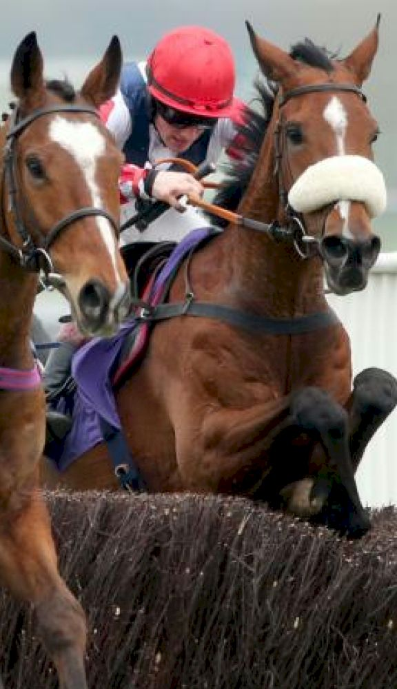 Punchestown Festival 2021 Packages from Race & Stay