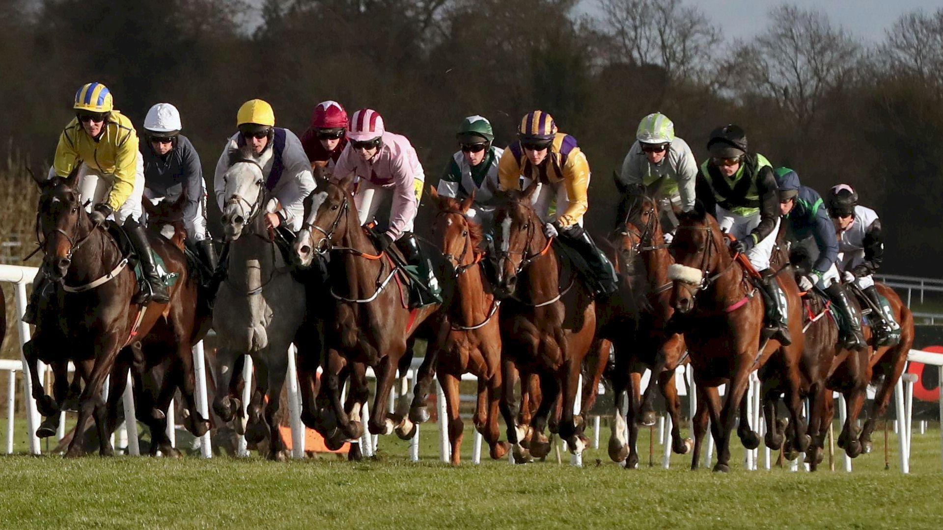 Punchestown Official Packages and Racing Breaks in Ireland