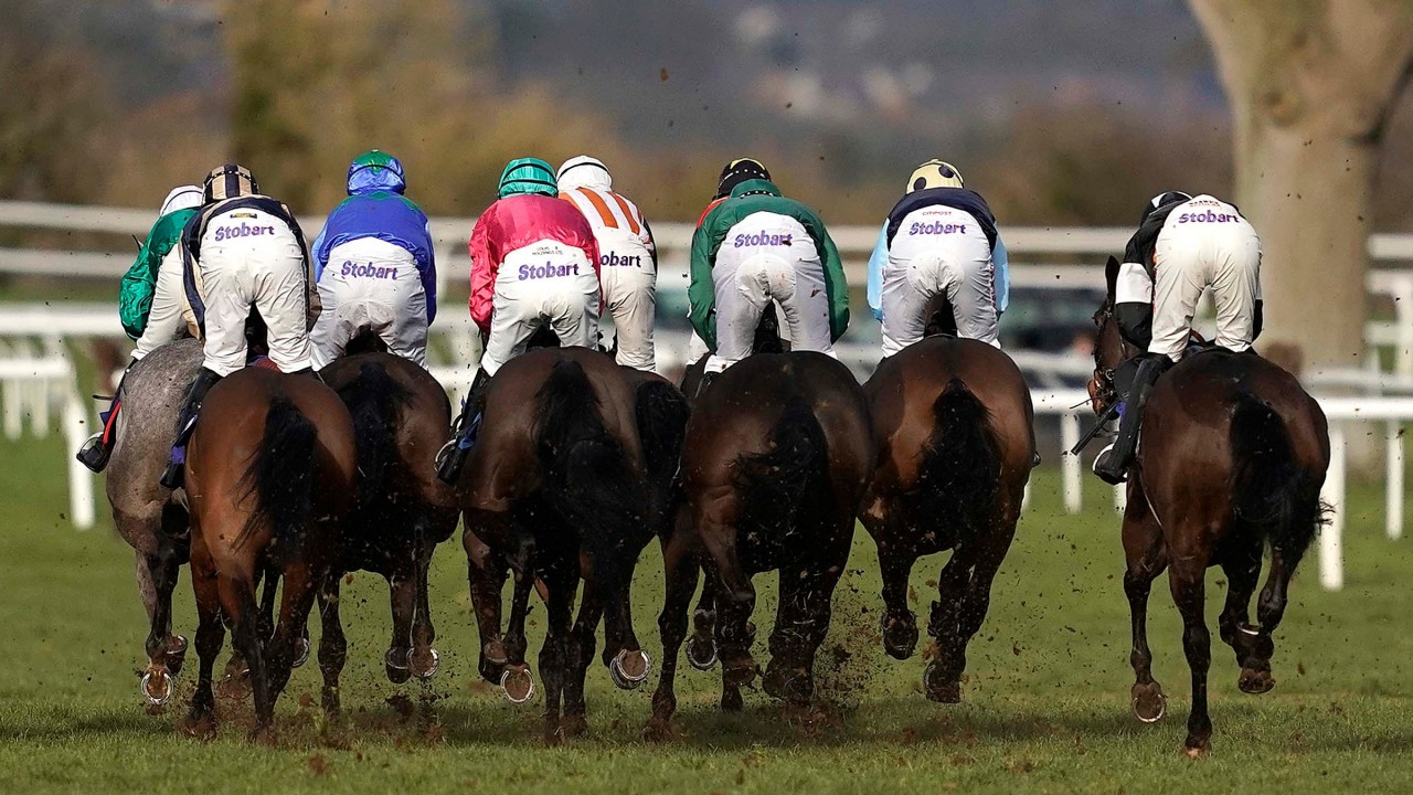 Race and Stay Great Gift Ideas for all Irish Race Meetings