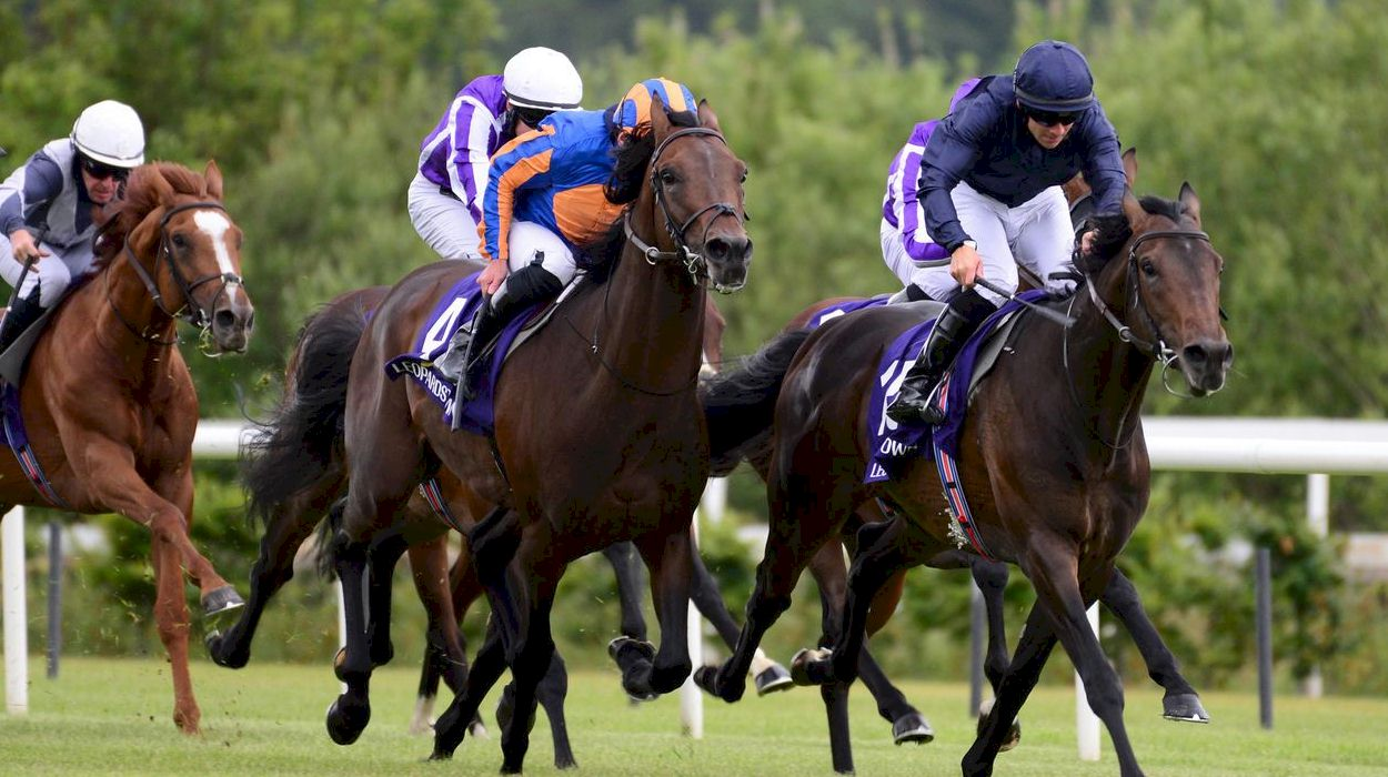 Curragh Race and Stay Horse Racing Packages and Racing Breaks in Ireland